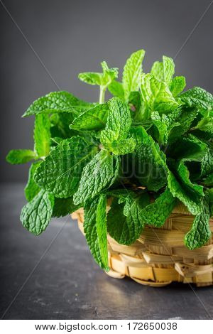 Green Mint In A Basket On A Gray Background