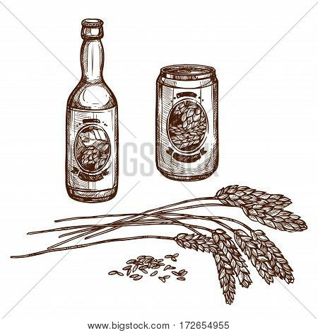 Beer and malt vector sketch of draught beer bottle and lager beverage in can, isolated beer brewery ingredient hop or wheat or barley grain ears and alcohol drink of ale pint for beer bar or pub