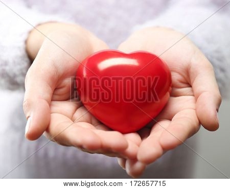 Hands holding red heart. Cardiology concept