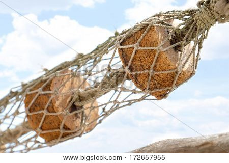 Float in the fishing net.Closeup