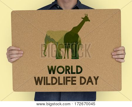 World Wildlife Day Animal Species Environmental