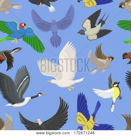 Set of different wing wild flying birds seamless pattern background