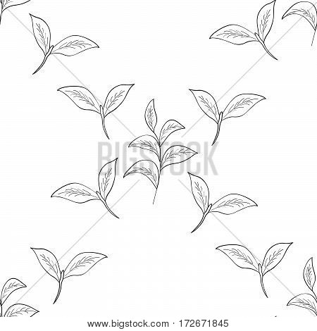 Green tea leaf illustration branch organic hand drawing sketch seamless pattern closeup.