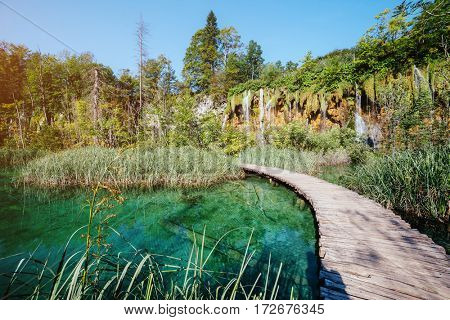 Majestic view on turquoise water and sunny beams. Picturesque and gorgeous scene. Popular tourist attraction. Location famous resort Plitvice Lakes National Park, Croatia, Europe. Beauty world.