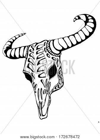 Buffalo skull. Hand drawn vector illustration. Native theme.