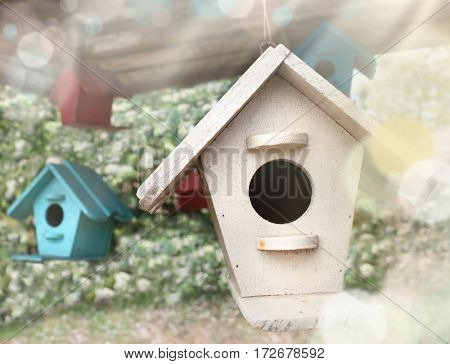 spring nature outside sunlight . wooden birds house. spring time easter