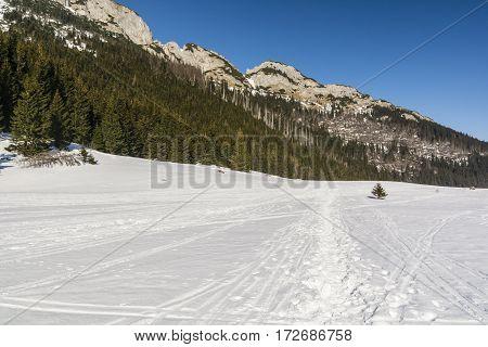 Snow Residual Glade Kondratowa.