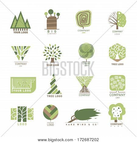 Vector tree wood oak logo design element badge modern forest label and logotype templates nature label for your business eco graphic plant illustration. Health banner green organic element.