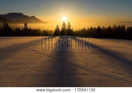 Dreamlike winter sunset with beautiful shadow play of three tree.