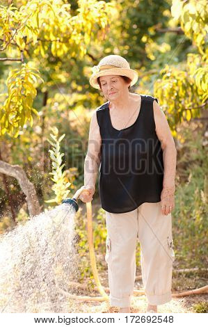 Smiling senior woman 70-75 year old watering plants in garden over green nature background. Retirement. 80s.