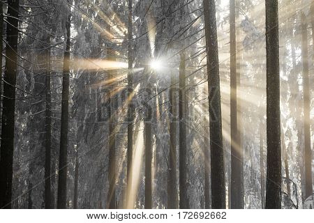 The holy light reaches the earth on a frosty day