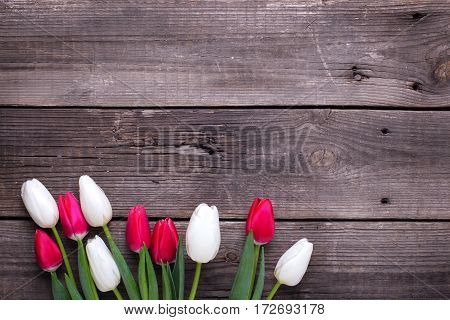 Border from bright pink and white tulips flowers on aged wooden background. Selective focus. Place for text. Flat lay.