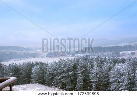 beautiful snowy trees in the mist at the morning mountains landscape
