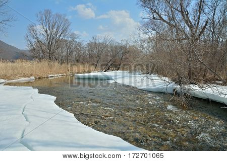 A spring landscape on small river ice motion.