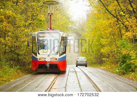 Tram moves on railway on road in yellow autumn park in city at overcast day
