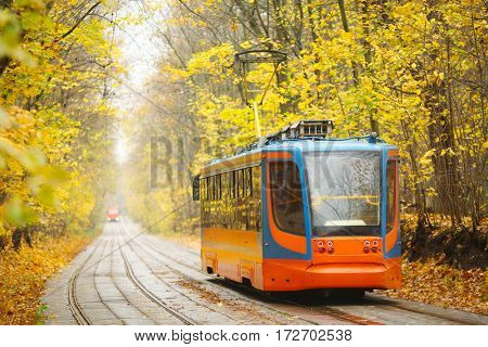 Tram moves on railway on road in autumn park in city at overcast day
