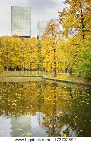 Beautiful pond in yellow autumn park in city with tall buildings