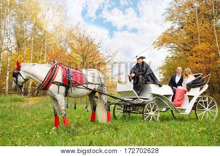 Happy couple are in coach with horse and coachman in yellow autumn park
