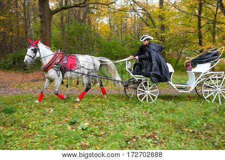 Coachman in black cloak rides in coach with horse in autumn park