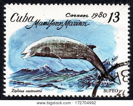 UKRAINE - CIRCA 2017: A stamp printed in Cuba shows the a dolphin Bufeo Ziphius cavirostris the series Sea mammals circa 1980