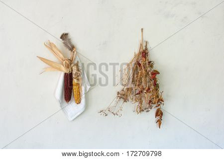 Rural still life, the cob dried red corn with a bundle of red pepper, dry grass and chicken feather hanging on the bleached wall in the farmhouse The composition is assembled by hand for raising crops