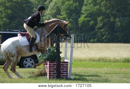 A girl and her horse as they go over a jump poster