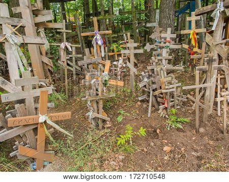 Holly Crosses In Grabarka