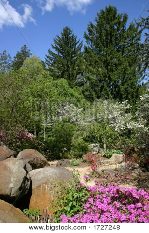 Spring Rock Gardens