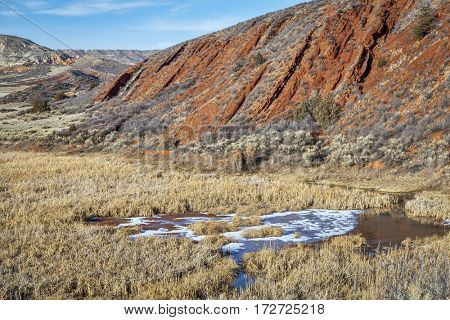 Sand Creek and swamp in Red Mountain Open Space, Colorado, winter scenery