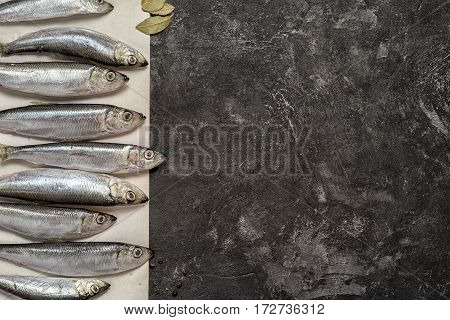 Raw Small Sprat Like Forage Fishes On A Paper, Copy Space On The Side, On A Dark Black Cement Backgr