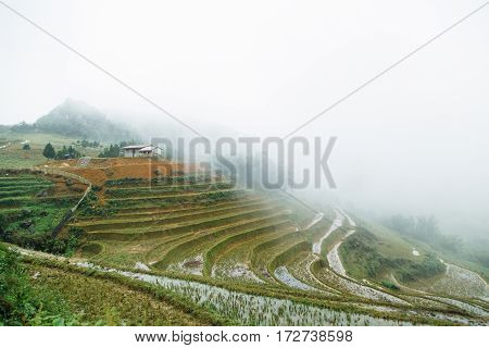 House on a hill of paddy field in Vietnam
