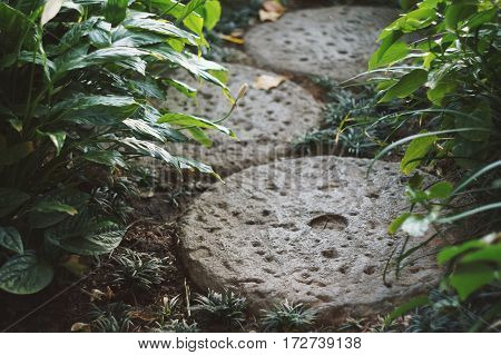 Small Footpath in garden made by round stone