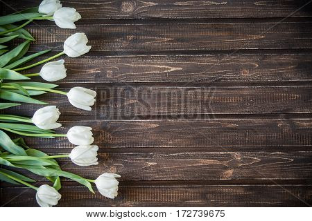 spring flowers lie on a wooden background