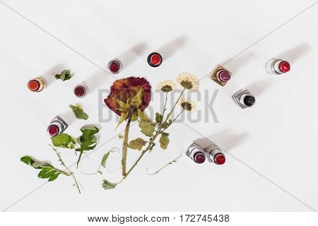 Glossy lipstick on white background. Decorative cosmetics for lips. Dried flowers on a light surface. View from above . Dry rose.