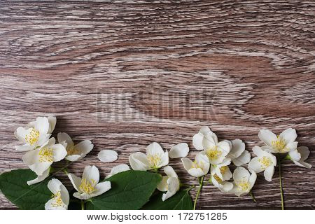 Frame of white flowers and jasmine petals lie on the wooden background. Wedding invitation of jasmine flowers card. Space for text and design. Wedding concept