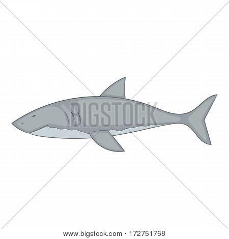 Shark icon. Cartoon illustration of shark vector icon for web