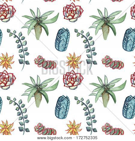 Watercolor hand drawn cactus succulent seamless pattern. White background. Beautiful vivid succulents. Raster image. Ideal for sites fliers flyers brochures wedding invitation card banners etc