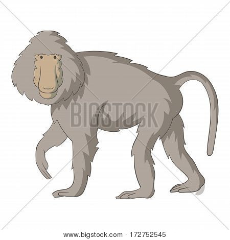 Baboons icon. Cartoon illustration of baboons vector icon for web