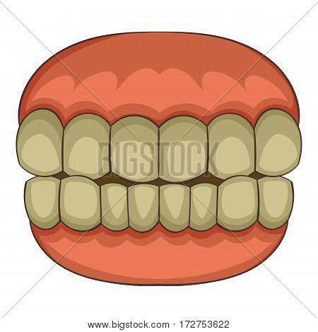 Teeth icon. Cartoon illustration of teeth vector icon for web