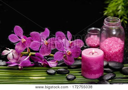 spa concept –red orchid and ,stones , ,candle,salt in bottle on green long leaf