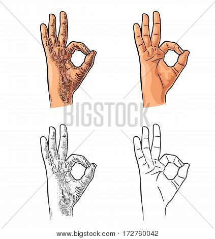 Hand showing symbol okay. Vector color and black vintage engraving and flat illustration isolated on white background. Sign for web poster info graphic