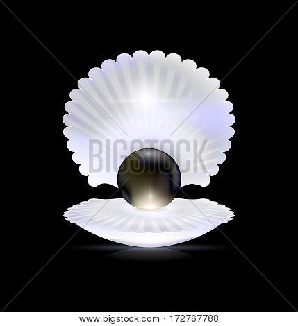 black background and the large white open shell with the big dark pearl inside