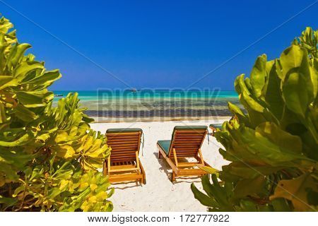 Sunbed on Maldives beach - nature vacation background