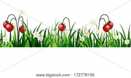 Green Grass with strawberries seamless isolated clip art vector on white