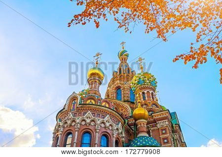 St petersburg Russia landmark - Cathedral of Our Savior on Spilled Blood in St Petersburg Russia in sunny autumn day. Architecture landscape of St Petersburg Russia landmark. Closeup of Cathedral of Our Savior on Spilled Blood in St Petersburg Russia