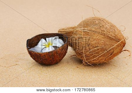 coconut and magnolia flower on a background of a sandy beach