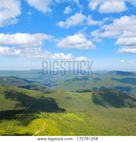 Carpathian mountains covered trees and blue sky