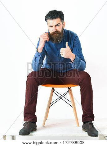 Bearded man long beard. Brutal caucasian serious hipster with moustache sitting on orange chair gesture yes wearing blue shirt vinous pants and black shoes isolated on white background