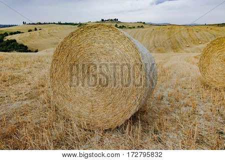Round straw bales in harvested fields and blue sky in Tuscany Italy
