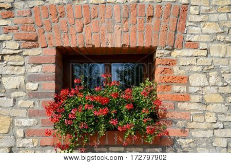 Window with geraniums on the windowsill in the old wall